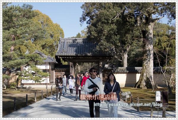 京都自由行275