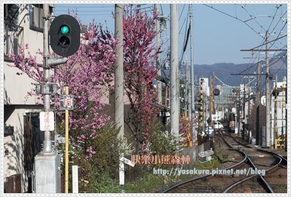 京都自由行264
