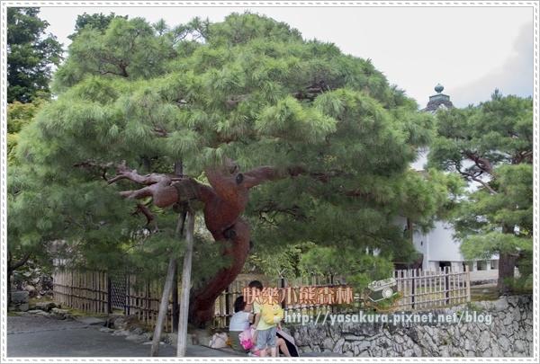 嵐山散066.jpg