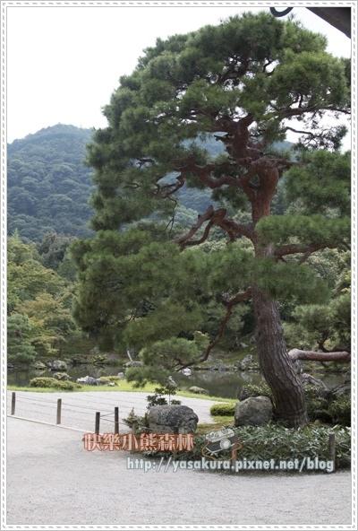 嵐山散071.jpg