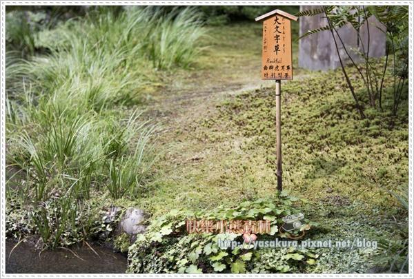 嵐山散078.jpg