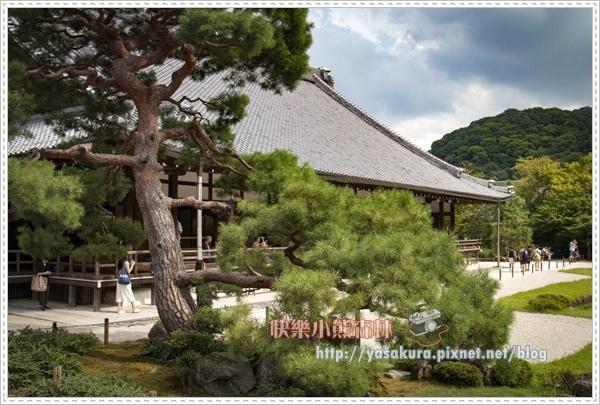嵐山散093.jpg