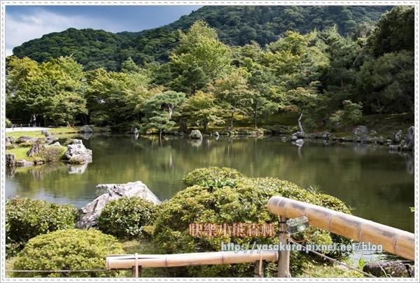 嵐山散132.jpg