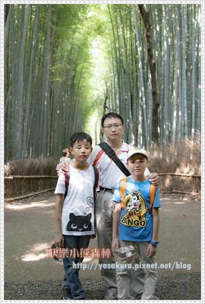 竹林002.jpg