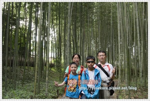 竹林035.jpg