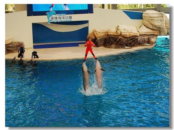 海豚很利害吧..不過我覺得這個人更利害..