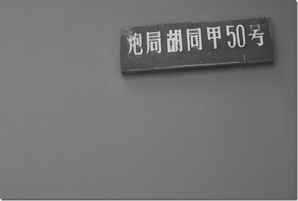 DSC04995