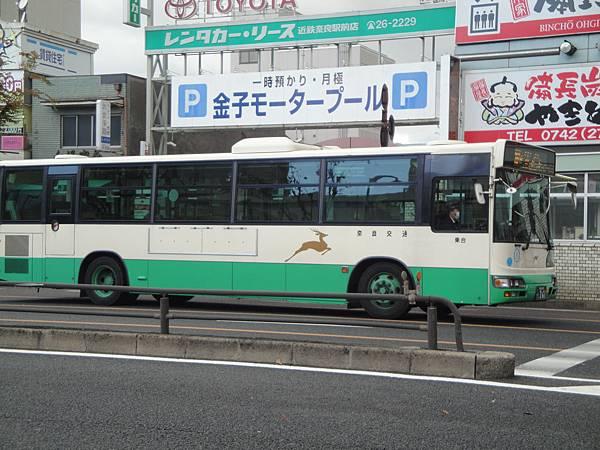巴士上都有鹿