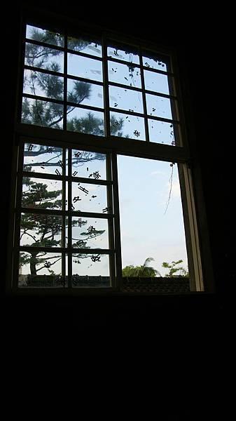 18.特別的窗