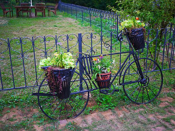 flower_bicycle.jpg