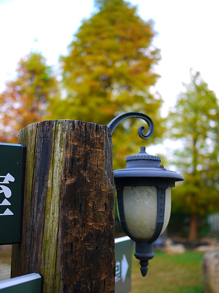yard_lamp.jpg