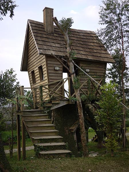treeHouse_large.jpg