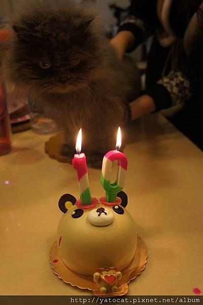 熊熊生日快樂
