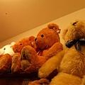 可愛的熊熊