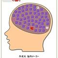 NI本名的腦袋
