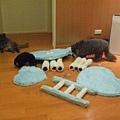 女王監督2貓工