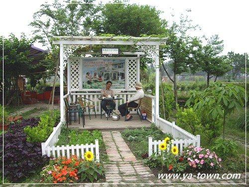 絲瓜棚涼亭菜園