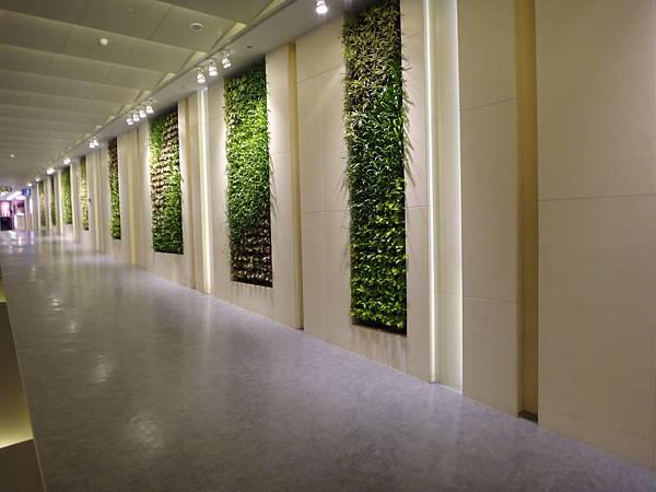 出境的走廊