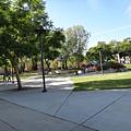 Cal State Fullerton校園_1