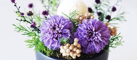 flower41_900x400.jpg