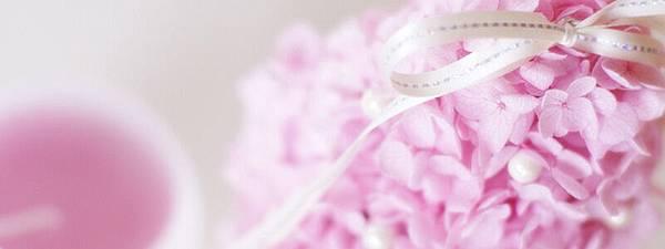 flower37_800x300.jpg