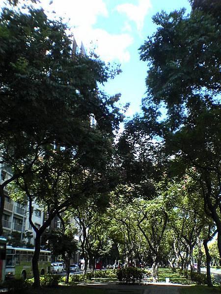 烈陽的綠洲