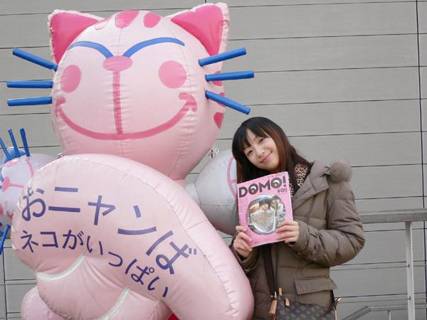 我v.s巨大貓貓