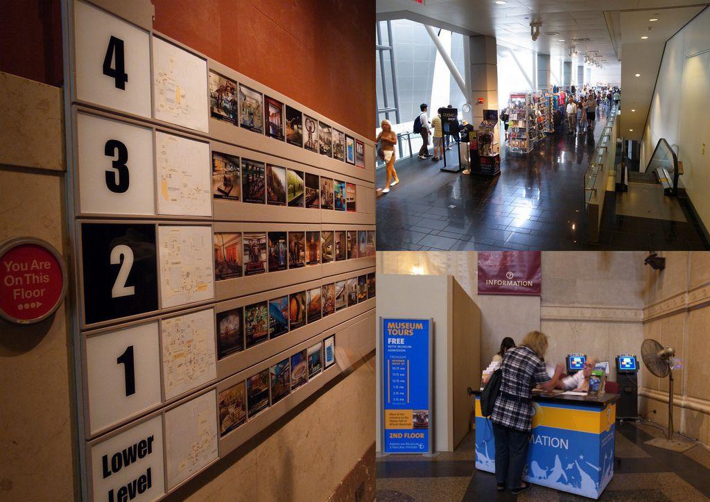 2010-07-29 自然歷史館6.jpg