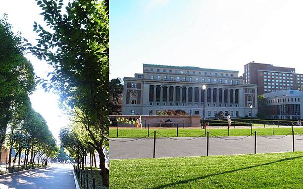 2010-07-29 自然歷史館27.jpg