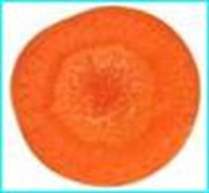 胡蘿蔔.bmp