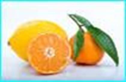 葡萄柚.bmp