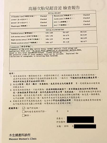 李木生 紙本報告A  拷貝.JPG