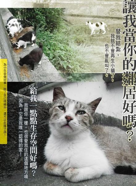 支持街貓TNR