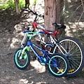 52腳踏車.JPG