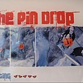 SW4.Pin Drop.JPG