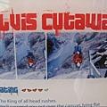 SW5.Elvis Cutaway.JPG