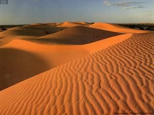 比塞爾人無法走出大漠