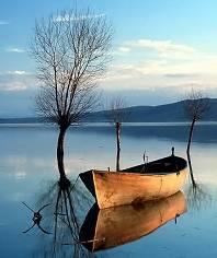 到岸不需船