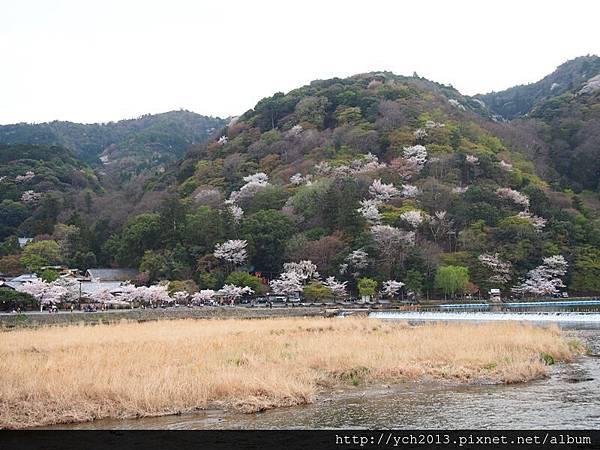 20130405嵐山 (9).JPG