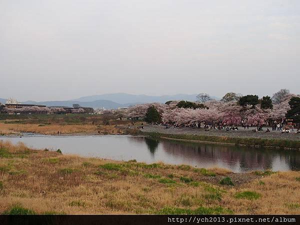20130405嵐山 (10).JPG