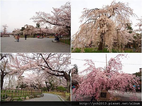 20130405嵐山 (12).jpg