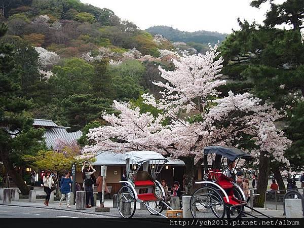 20130405嵐山 (16).JPG