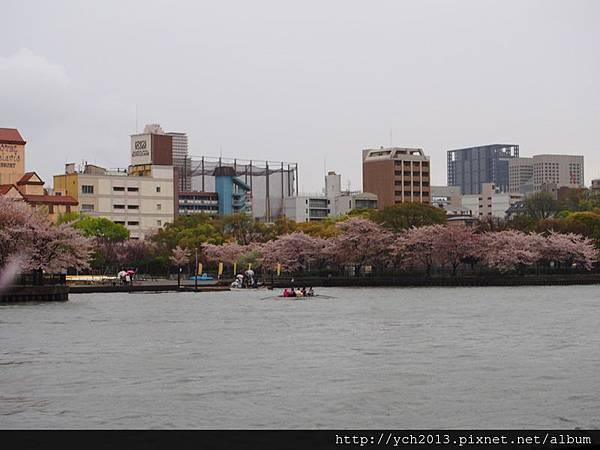 20130406大阪水上巴士 (6).JPG