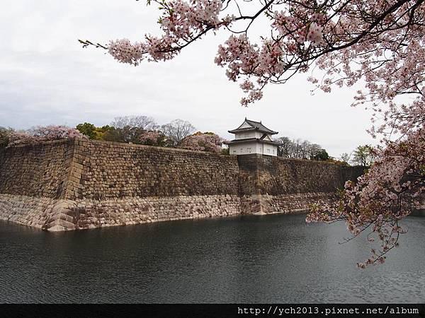 20130406大阪城 (2).JPG
