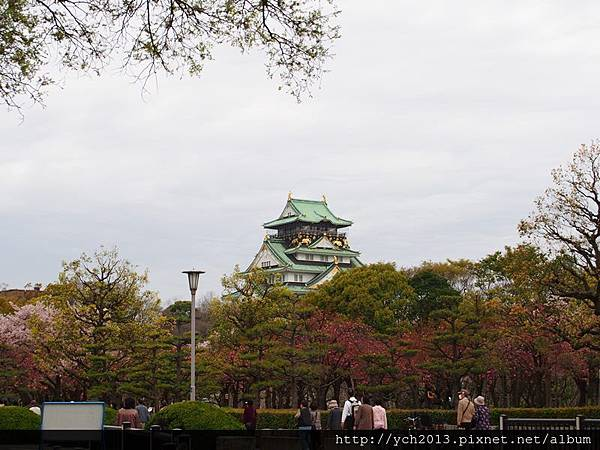 20130406大阪城 (5).JPG