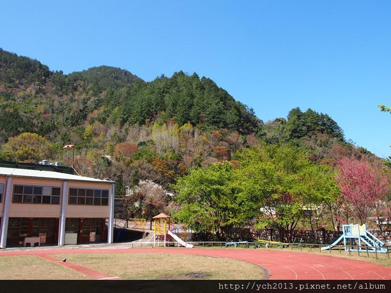 20140223秀巒部落 (11).JPG