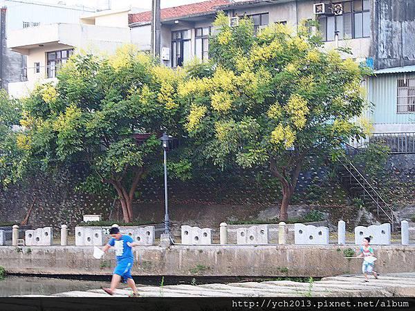 20140907東安古橋 (10).JPG