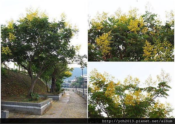 20140907東安古橋 (9).jpg