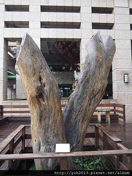 20131005領獎 (18).JPG