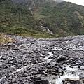 20140728Fox Glacier (5).JPG
